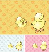 Baby pattern with chickens