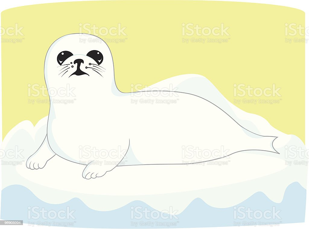 baby seal puppy royalty-free baby seal puppy stock vector art & more images of animal