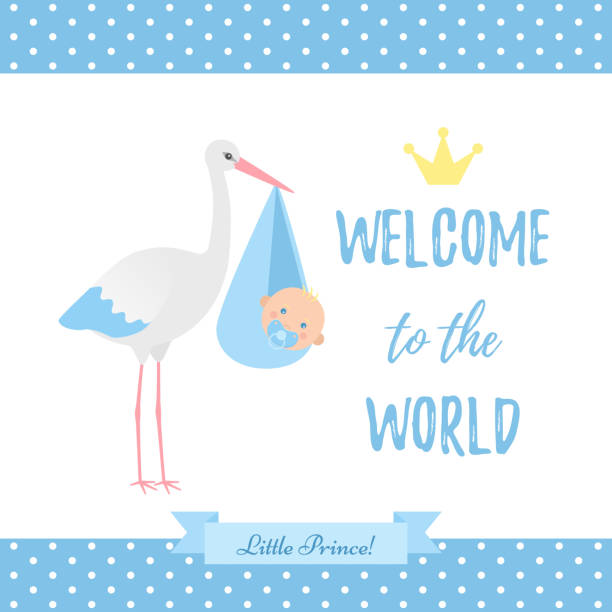 Baby Shower boy card. Vector illustration. Blue banner with stork. Baby Shower boy card. Vector. Baby boy birth party poster with stork, newborn kid, polka dot pattern. Sweet blue banner in flat design. Cute template invite background. Colorful cartoon illustration. baby shower stock illustrations