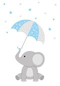 Baby Shower Elephant Design