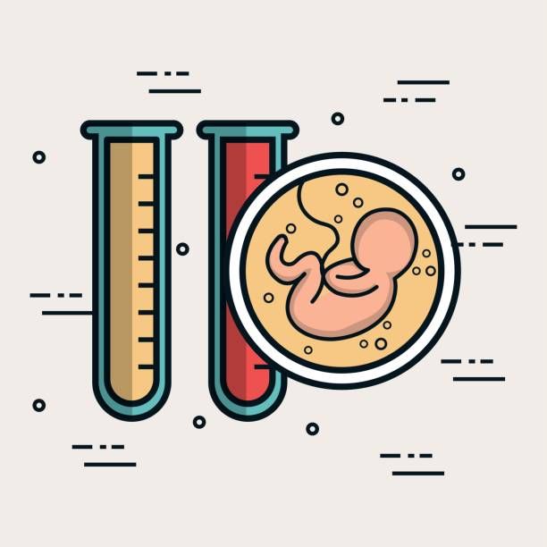 baby test tubes biology anatomy vector art illustration