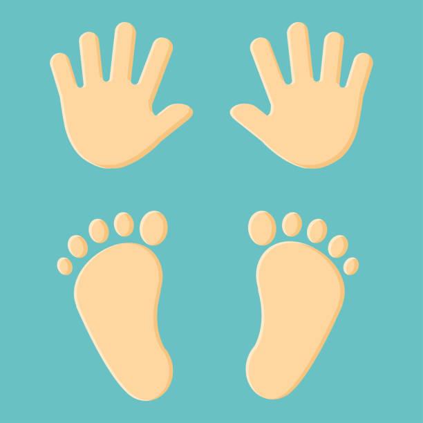 ilustrações de stock, clip art, desenhos animados e ícones de baby's foot prints and hand prints. vector illustration. - feet hand