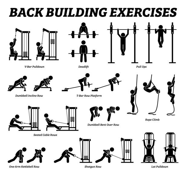 Back building exercises and muscle building stick figure pictograms. Artworks depict a set of weight training reps workout for back muscle by gym machine and tools with step by step instructions. exercise machine stock illustrations