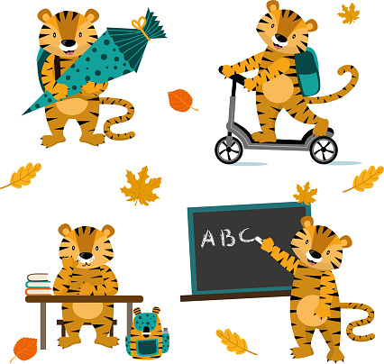 Back to school education cute tiger with school bag, school cone, blackboard and scooter vector illustration for your design.