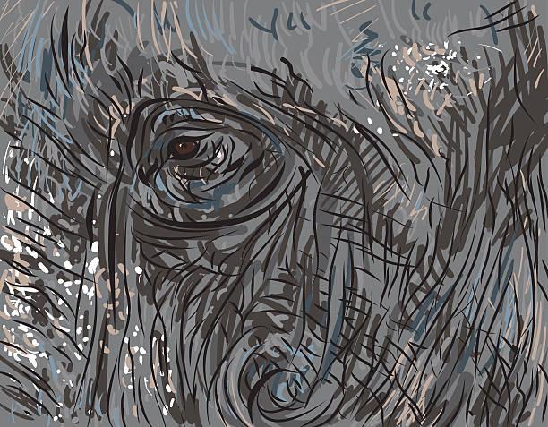 Best Elephant Eye Illustrations, Royalty-Free Vector ...