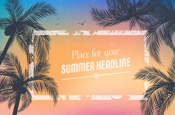 Background for your summer design with palm trees Background for your summer design with palm trees silhouettes and grungy frame - vector illustration beach borders stock illustrations