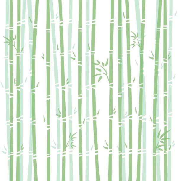 Background illustration of bamboo vector art illustration