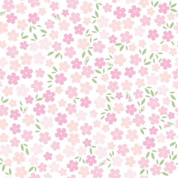 ilustrações de stock, clip art, desenhos animados e ícones de background illustration of cherry blossoms - cherry blossoms