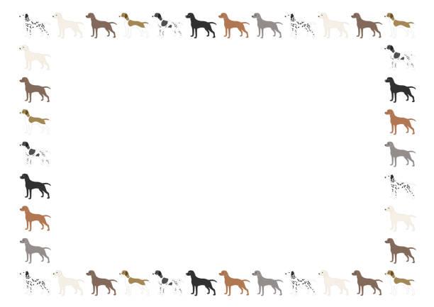 hintergrund illustration von hunden - vizsla stock-grafiken, -clipart, -cartoons und -symbole