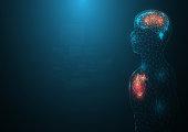 background  network heart  human brain