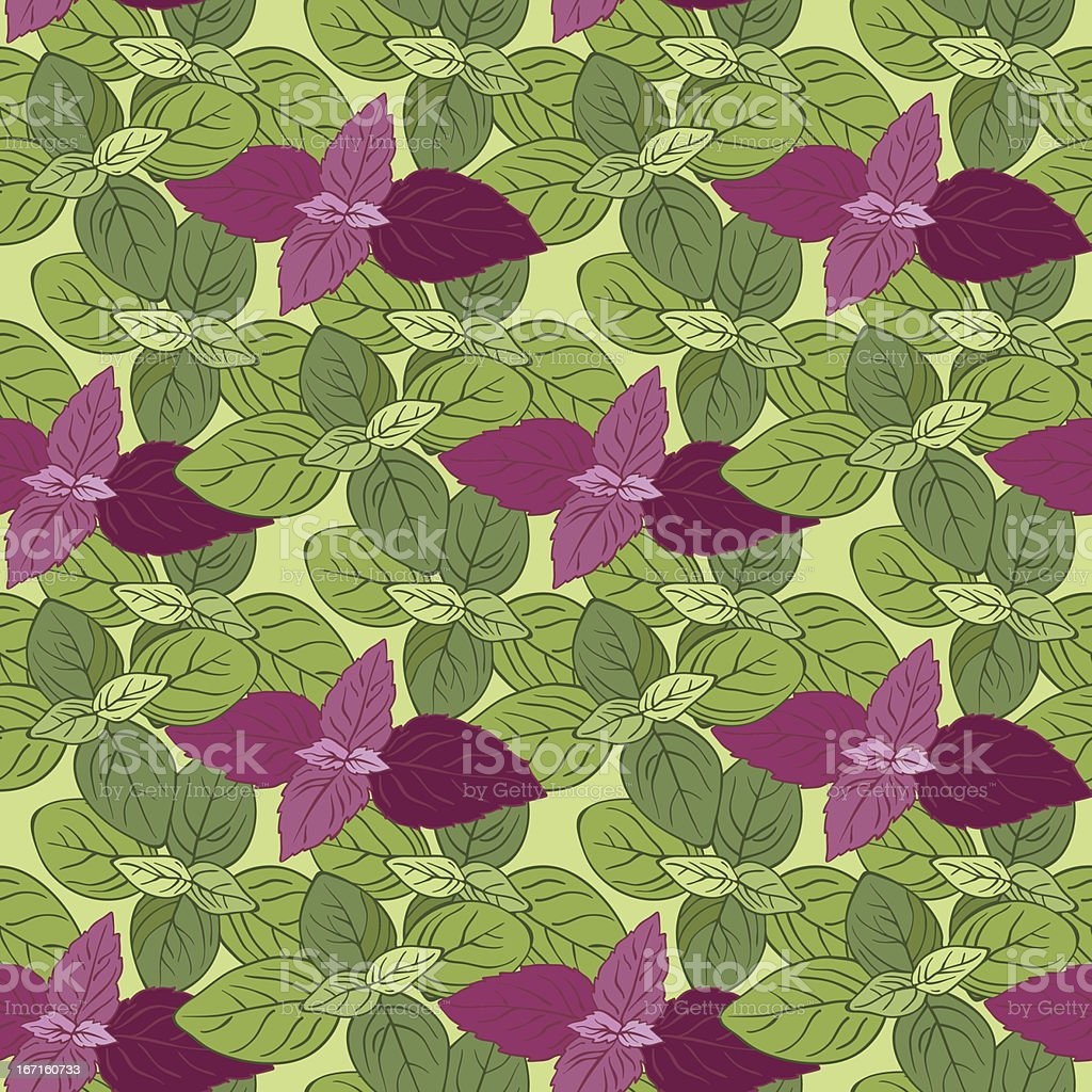 Background of basil royalty-free background of basil stock vector art & more images of art
