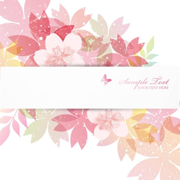 ilustrações de stock, clip art, desenhos animados e ícones de background of cherry blossoms - cherry blossoms
