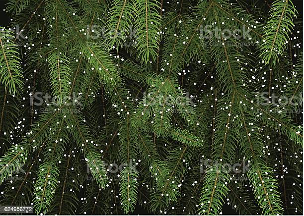 Background of christmas tree branches vector id624956772?b=1&k=6&m=624956772&s=612x612&h=mbbdlaqul87zzdxqnykbnlteq bkdsnpgehymvuheig=