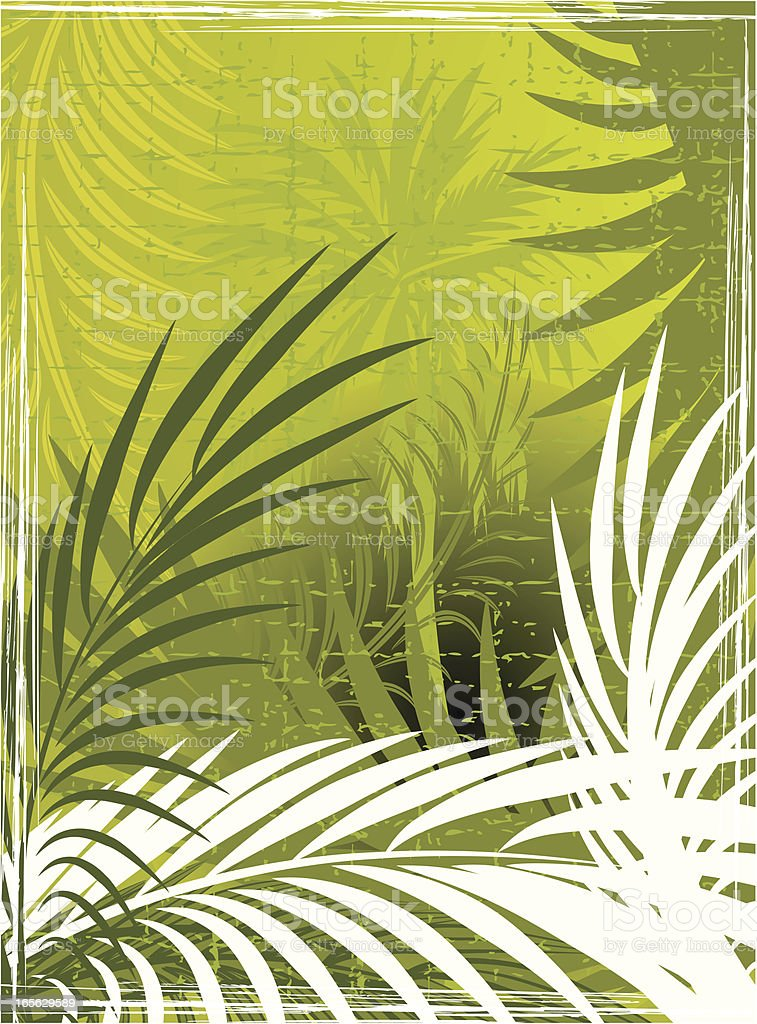 Background of green palm tree leaves royalty-free stock vector art