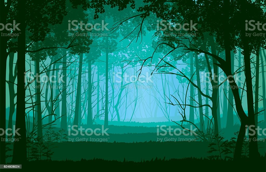 Background of landscape with deep forest. - Illustration vectorielle