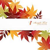 autumn, nature