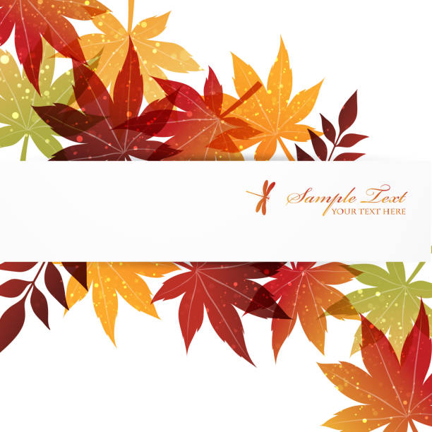 background of red leaves autumn, nature autumn leaf color stock illustrations