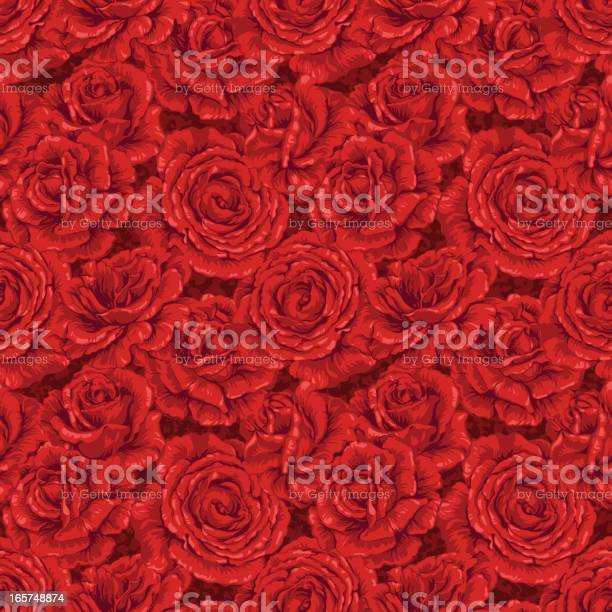 Background of seamless red rose pattern vector id165748874?b=1&k=6&m=165748874&s=612x612&h=vuytcabvduykevxbs2myep914qbdit2abfhth3gm7jy=