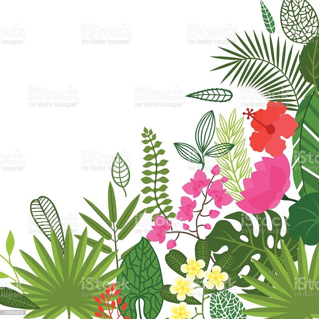 tropical island desktop background