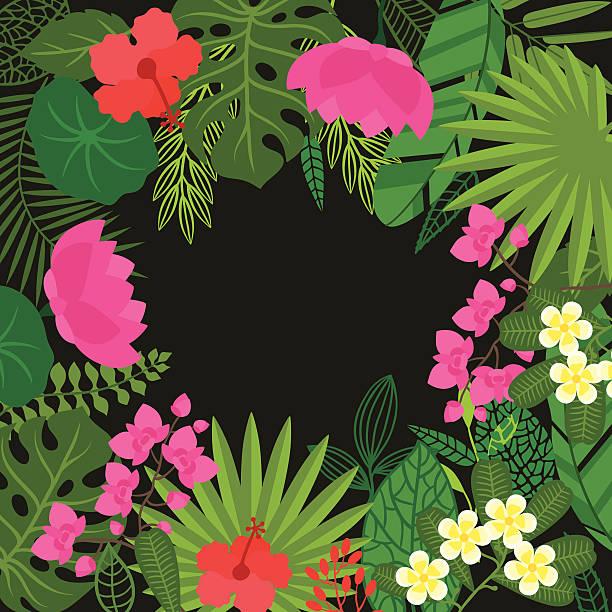 hintergrund mit stilisierten tropischen pflanzen, blättern und blumen. - hibiskusgarten stock-grafiken, -clipart, -cartoons und -symbole