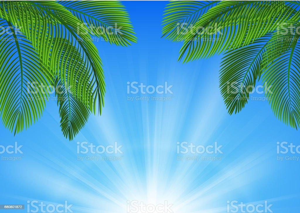 Background of Tropical Leaves. Suitable for nature concept, vacation, and summer holiday. Vector Illustration vector art illustration