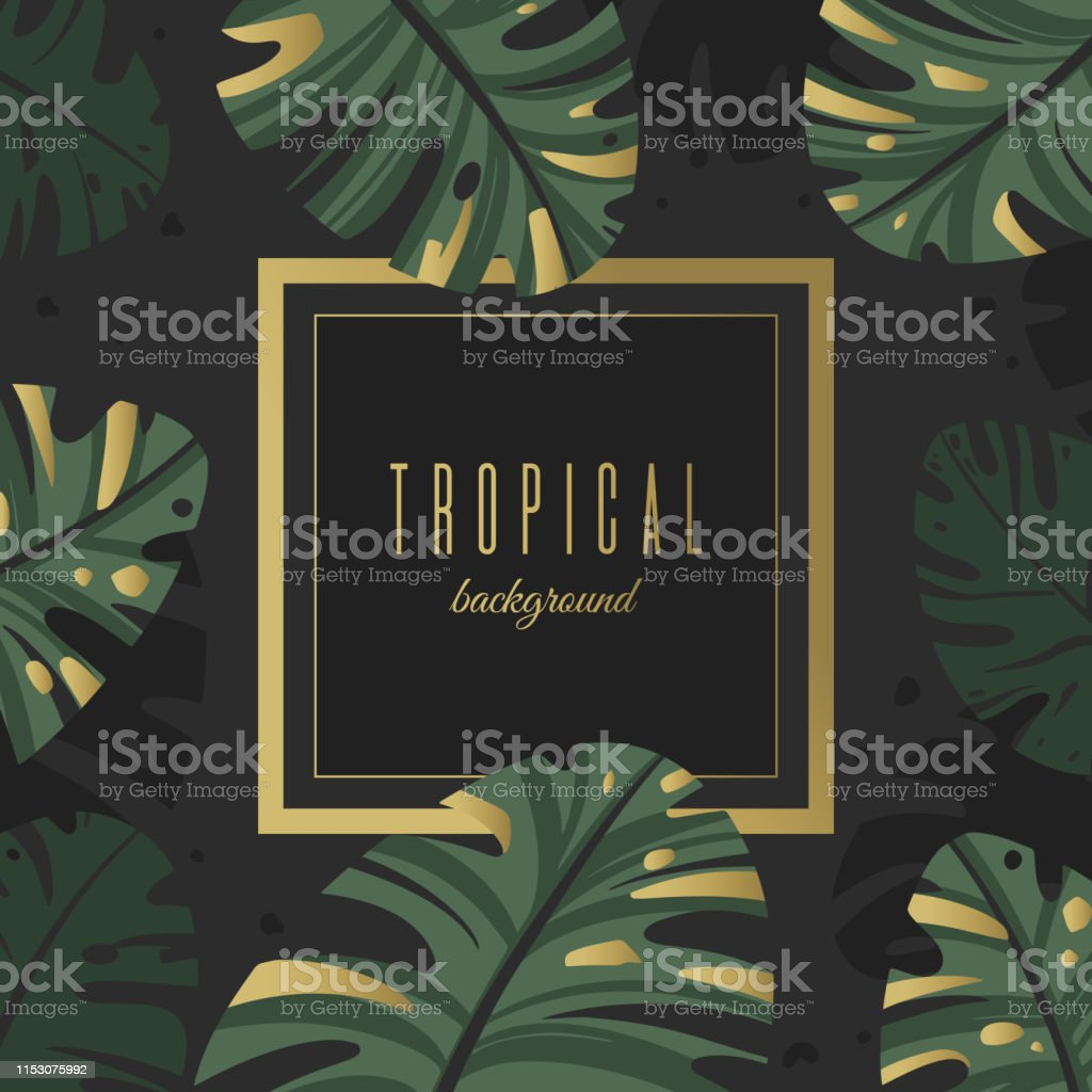 Background Of Tropical Leaves With Gold Decor Stock Illustration Download Image Now Istock ✓ free for commercial use ✓ high quality images. https www istockphoto com vector background of tropical leaves with gold decor gm1153075992 313056886