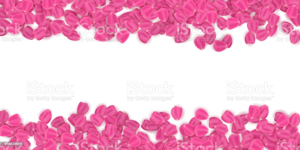 background of tulip petals march 8 valentines day romantic frame