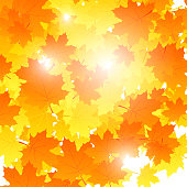 Background on autumn theme, maple leaves falling. Vector illustration.