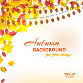 Background on autumn theme, yellow and red leaves falling. Vector illustration.