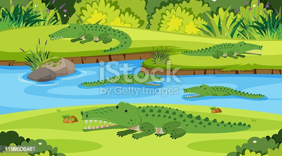 Background scene with crocodiles in the river illustration