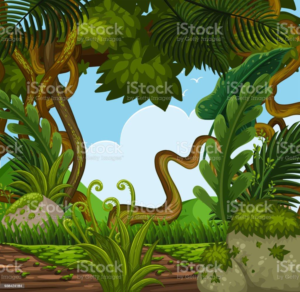Cena de fundo com árvores na floresta - ilustração de arte em vetor