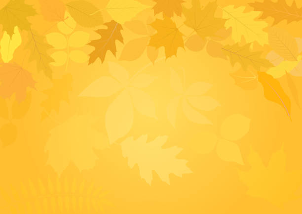 background background with autumn leaves fall background stock illustrations
