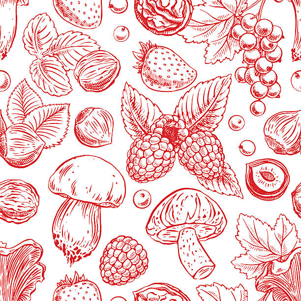 background with berries, nuts and mushrooms vector art illustration