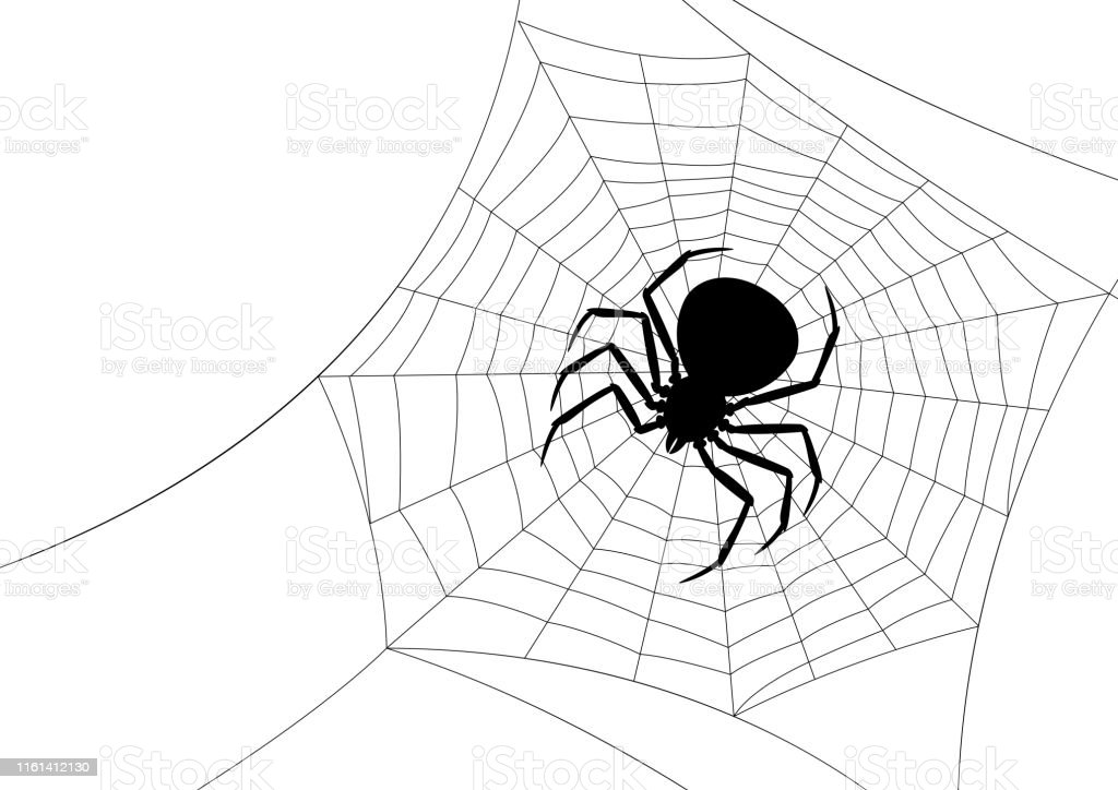 Background With Black Widow Spider Stock Illustration Download Image Now Istock