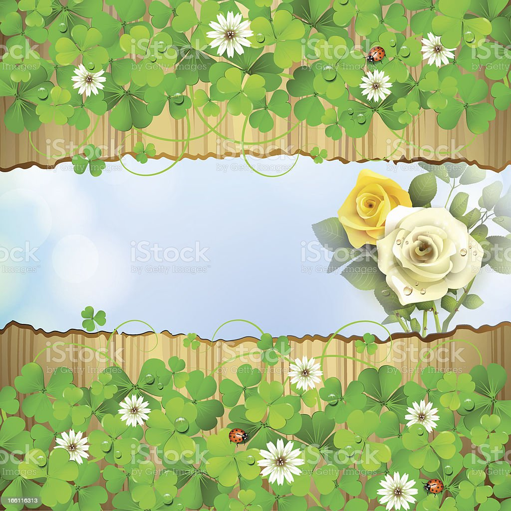 Background with clover and roses royalty-free stock vector art