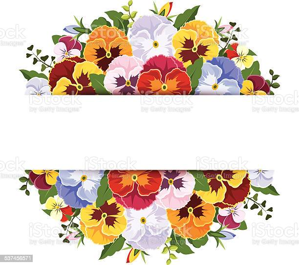 Background with colorful pansy flowers vector eps10 vector id537456571?b=1&k=6&m=537456571&s=612x612&h=abvuec0xttgfhm2sr0xejljnntco0b5ep6zsdqlnvu0=