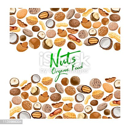 Vector background with different types nuts. Nutrition and agriculture concept. Walnut, coconut, nutmeg, hazelnut, pecan, almond, peanut, macadamia. Pattern with seeds and nuts on a white background.