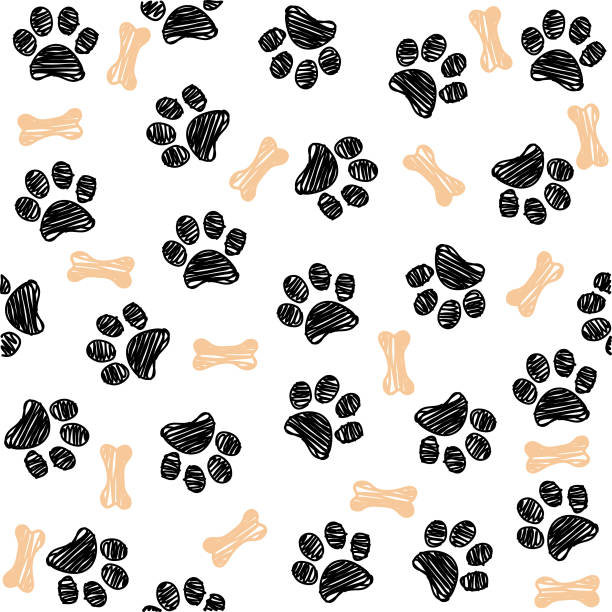 background with dog paw print and bone - wzór graficzny stock illustrations