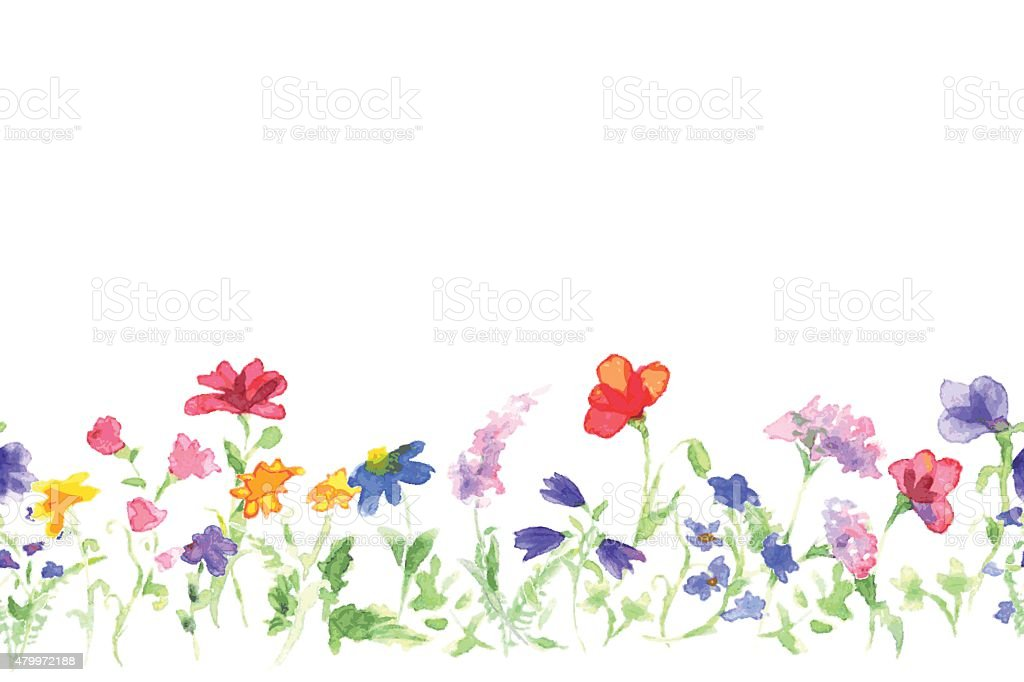 Background with drawing of watercolor wildflowers vector art illustration