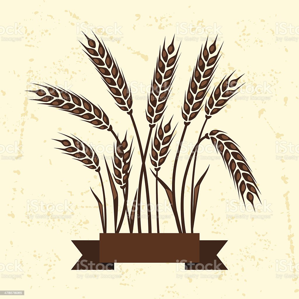 Background with ears of wheat. - Royalty-free Agricultural Field stock vector
