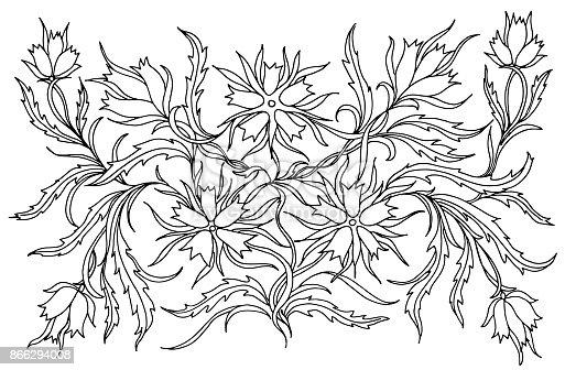 Achtergrond Met Bloemen En Planten Zwartwit Doodle