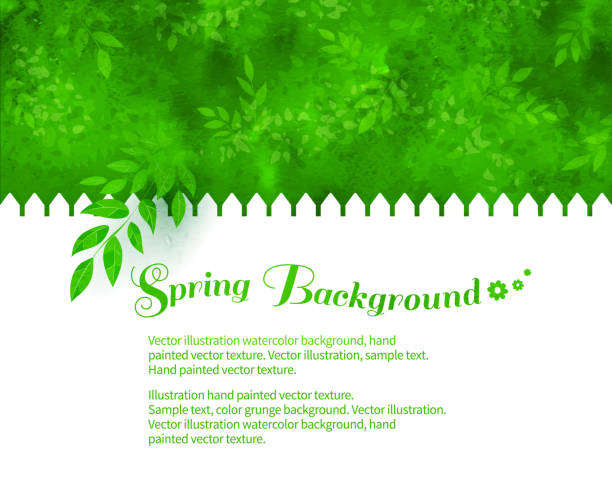 background with green shrubs - backyard stock illustrations