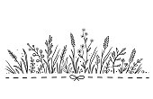 decorative background with hand drawn wild herbs and flowers