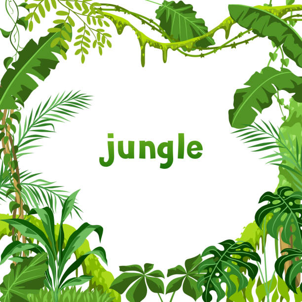 Background with jungle plants. Background with jungle plants. Tropical leaves. Woody natural rainforest. amazon stock illustrations
