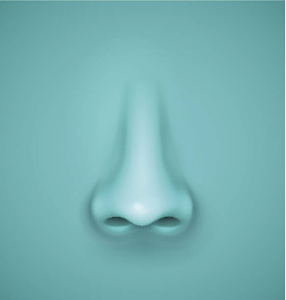 tło z nosa - nos stock illustrations