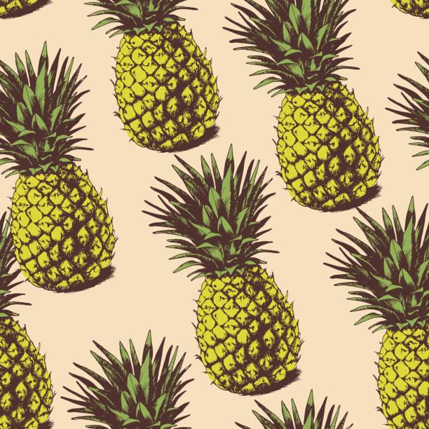 illustrazioni stock, clip art, cartoni animati e icone di tendenza di sfondo con ananas - ananas