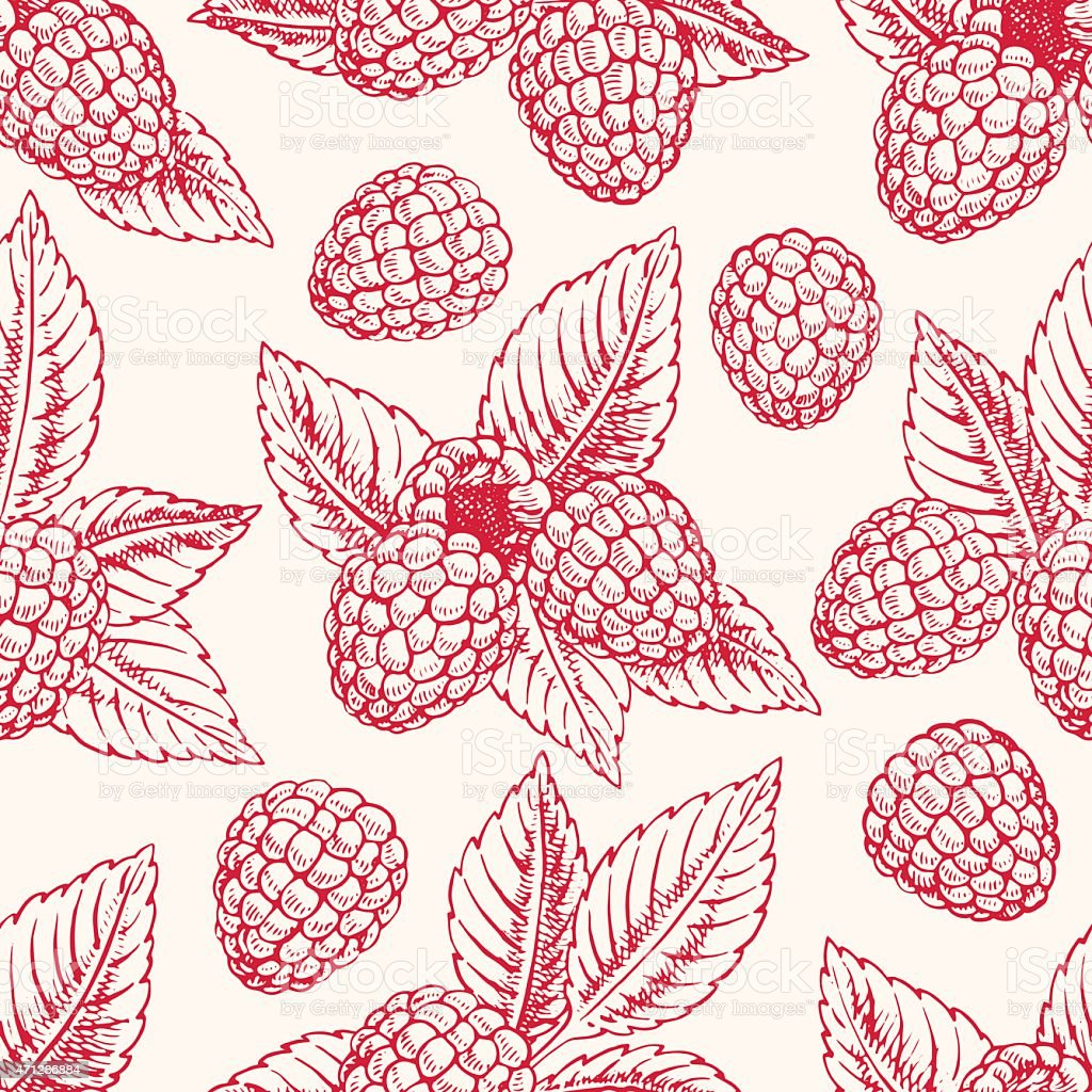 background with pink raspberries vector art illustration