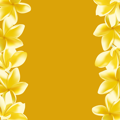 Background with realistic vector Frangipani flower