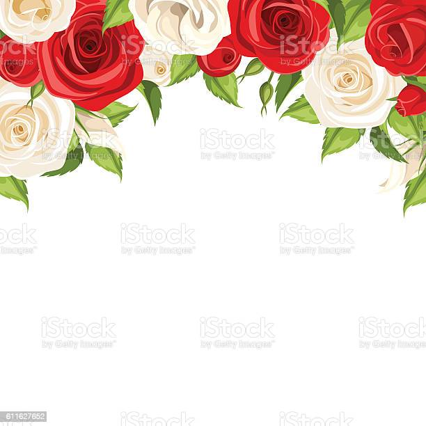 Background with red and white roses vector illustration vector id611627652?b=1&k=6&m=611627652&s=612x612&h=ruzhzkjtiixxuyofb sk6oiry2ewqnccwas4ory cyq=
