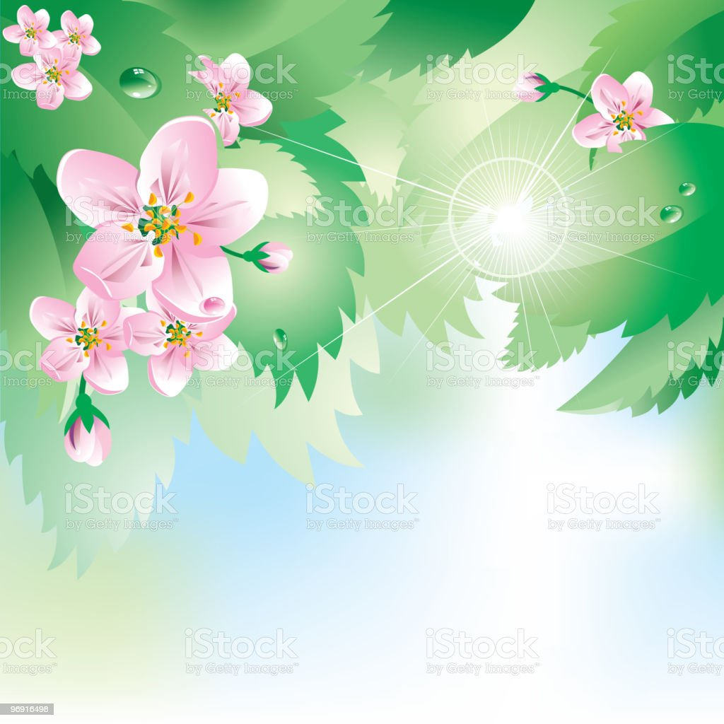 background with spring flowers and  leaves royalty-free background with spring flowers and leaves stock vector art & more images of apple - fruit